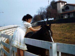 Laura visiting horse at Pomona